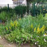 jardin gare 1 web