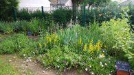Envie de jardiner? Pour le jardinage, il n'y a pas […]