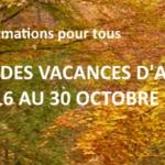 Animations d'automne pour tous: demandez le programme !